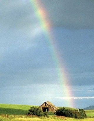 agri_rainbow